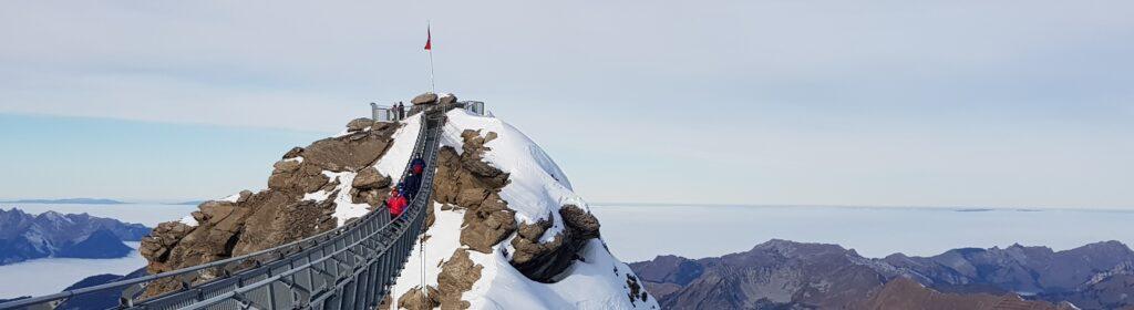 Peak Walk at Glacier3000 with view over Vaud